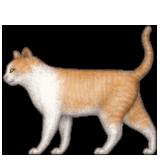 Emoji avatar 121