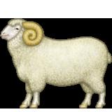 Emoji avatar 33